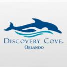 Discovery Cove Ultimate SEM NADO com Golfinho + SeaWorld Orlando + Aquatica Orlando + Busch Gardens Tampa